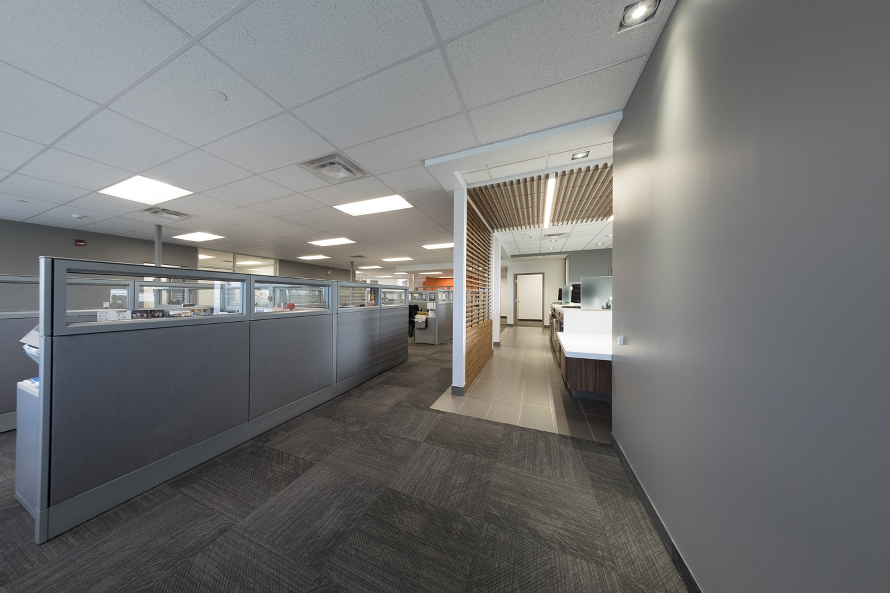 White corridor with partitioned workstations on left and communal kitchen with wood slat feature on right