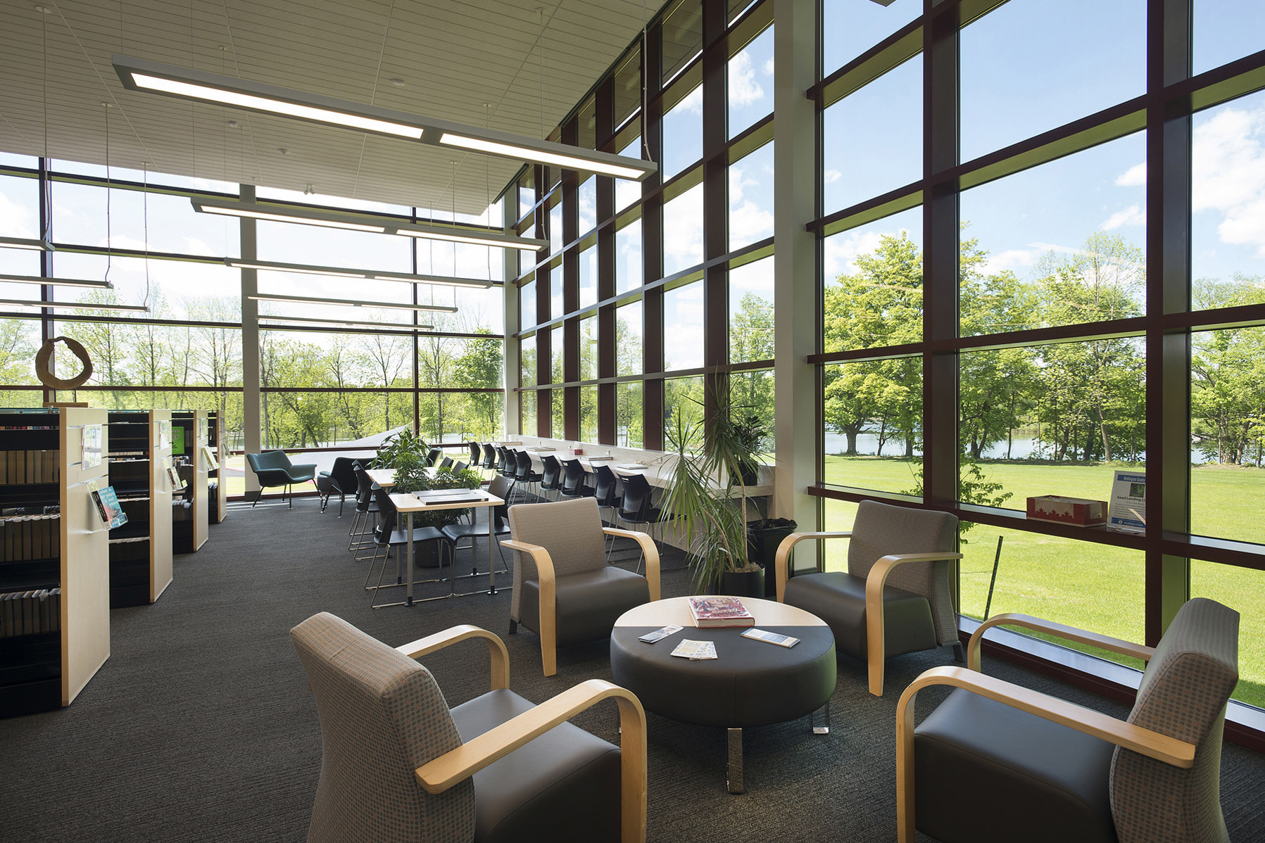 Glazed walls with steel frames with lounge seating, group study and individual study bench seating in bright window with views of trees