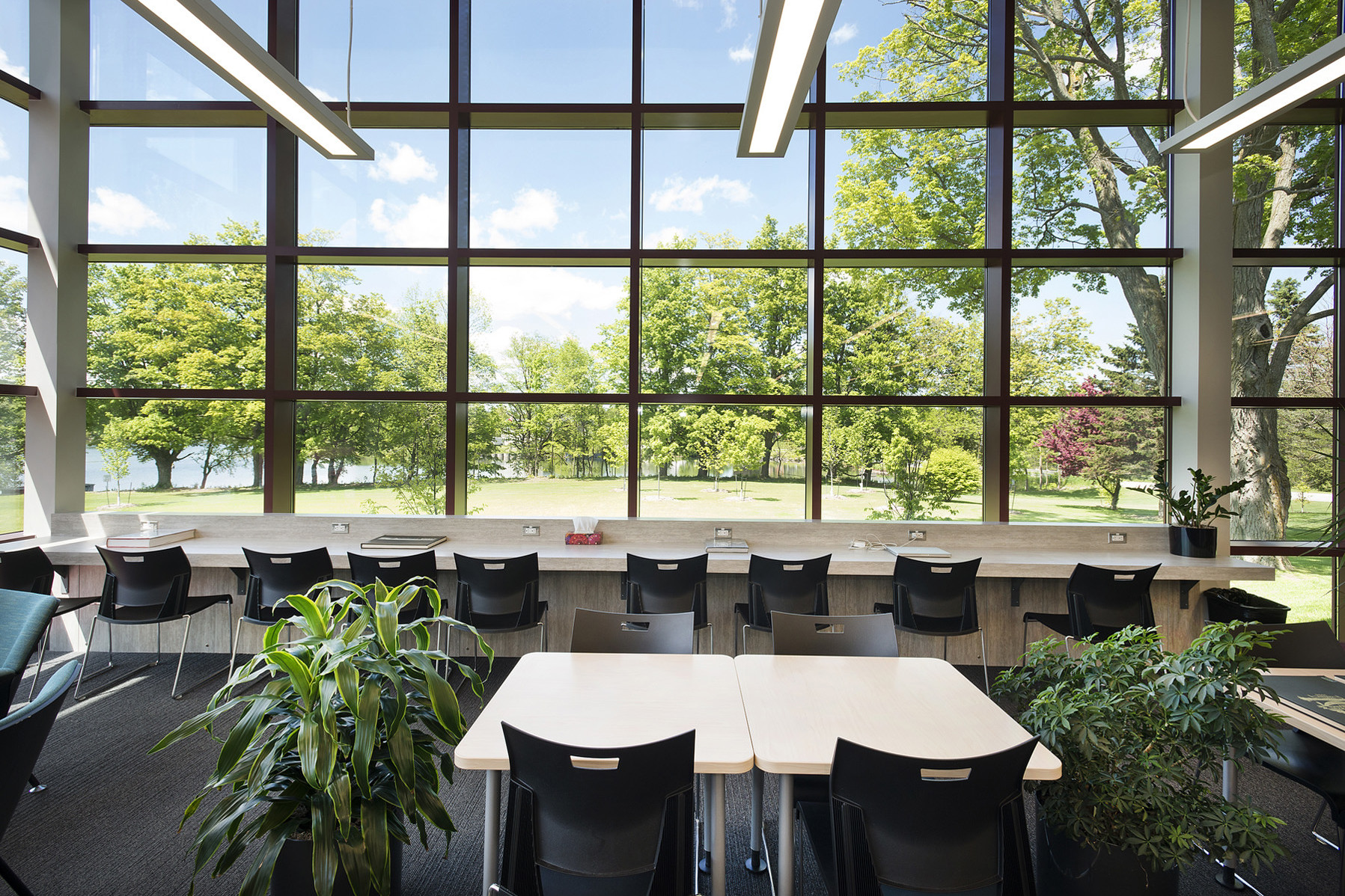 Group study desks and individual study bench seating in bright window with views of trees