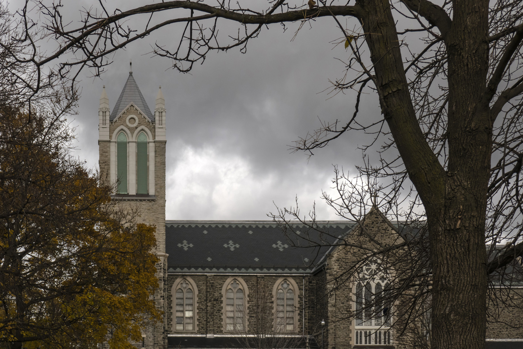 Elevation of church highlighting slate roof and bell tower set behind trees with stormy sky